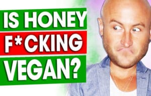 Is-Honey-Vegan-Should-Vegans-Eat-Honey
